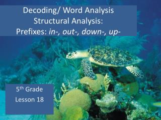 Decoding/ Word Analysis Structural Analysis:  Prefixes:  in-, out-, down-, up-