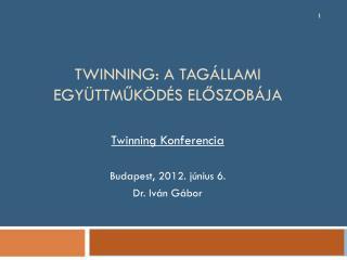 Twinning : a tagállami együttműködés előszobája