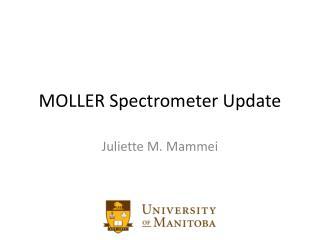 MOLLER Spectrometer Update