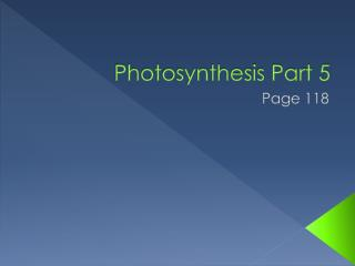 Photosynthesis Part 5