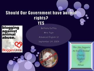 Should Our Government have animal rights? YES