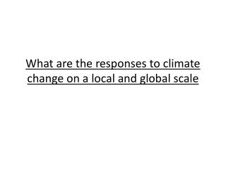 What are the responses to climate change on a local and global scale