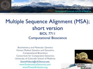 Multiple Sequence Alignment (MSA); short version BIOL 7711  Computational Bioscience