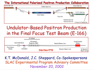Final Focus System Concepts in Linear Colliders