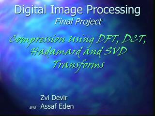 Digital Image Processing Final Project