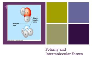 Polarity and Intermolecular Forces