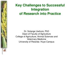 Key Challenges to  S uccessful Integration  of Research into Practice