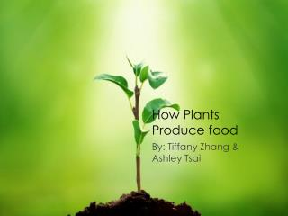 How Plants Produce food