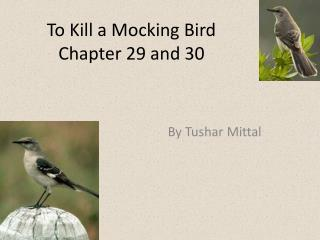 To Kill a Mocking Bird  Chapter 29 and 30