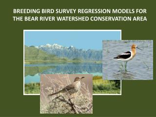 BREEDING BIRD SURVEY REGRESSION MODELS FOR  THE BEAR RIVER WATERSHED CONSERVATION AREA