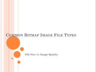 Common Bitmap Image File Types