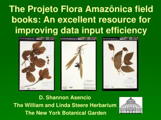 The Projeto Flora Amazônica field books: An excellent resource for improving data input efficiency