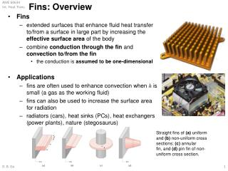 Fins: Overview