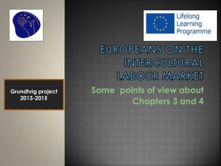 Europeans  on  the  intercultural  labour  market