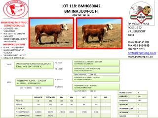 LOT 118: BMH080042 BM INA JU04-01 H GEM TKP: 341 (4)
