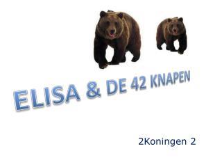 ELISA  & DE  42 KNAPEN