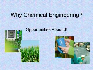 Why Chemical Engineering?