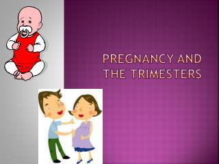 Pregnancy and the Trimesters