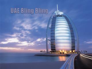 UAE  Bling Bling