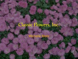 Classic Flowers, Inc.