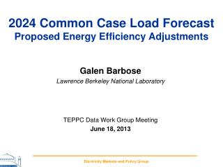 2024 Common Case Load  Forecast  Proposed Energy Efficiency Adjustments