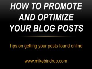 How  to Promote and Optimize Your Blog  Posts