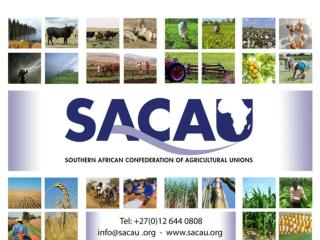 FINANCING AGRICULTURE IN SOUTHERN AFRICA: SETTING THE SCENE