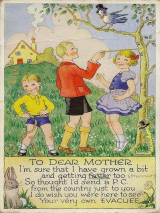 What does this postcard say about life in the country for  evacuees?