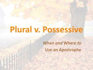 Plural v. Possessive