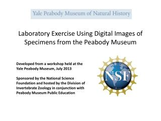 Laboratory Exercise Using Digital Images of Specimens from the Peabody Museum
