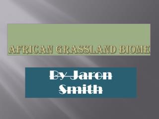 African Grassland biome