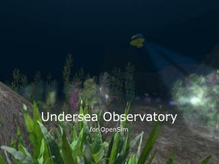 Undersea Observatory