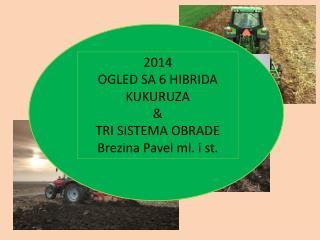 2014 OGLED SA 6 HIBRIDA KUKURUZA  & TRI SISTEMA OBRADE Brezina Pavel ml. i st.