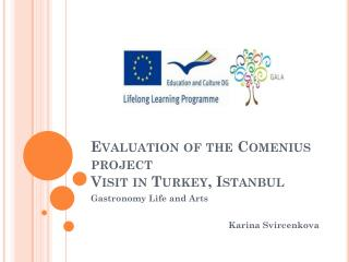 Evaluation of the Comenius project Visit in Turkey ,  Istanbul