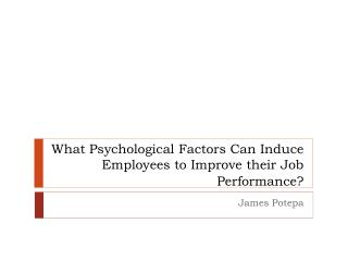 What Psychological  Factors  Can Induce Employees to Improve their Job  Performance?