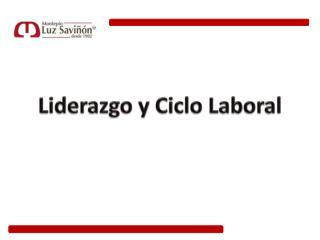 Liderazgo y Ciclo  Laboral
