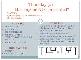Agenda Warm Up Example  Cladogram Classifying  Theobroma  cacao part 2 Cladisticules Homework