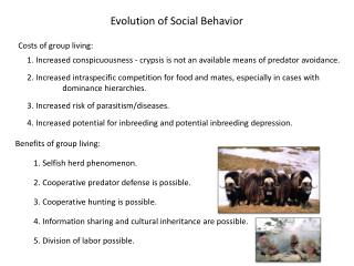Evolution of Social Behavior