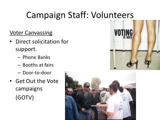 Campaign Staff: Volunteers