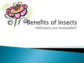 Benefits of Insects