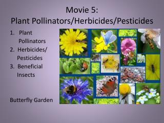 Movie 5: Plant Pollinators/Herbicides/Pesticides