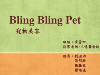 Bling  Bling  Pet