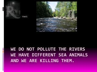 We do not pollute the rivers we have different sea animals and we are killing them.