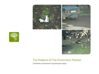 The Problems Of The Environment Pollution