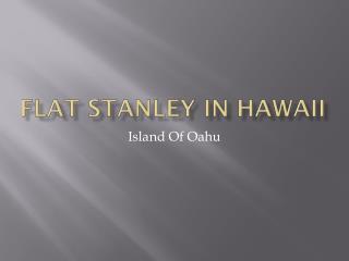 Flat Stanley In Hawaii