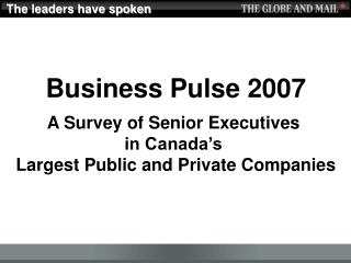 Download Business Pulse 2007