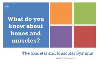 The Skeletal and Muscular Systems