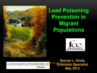 Lead Poisoning Prevention in Migrant Populations