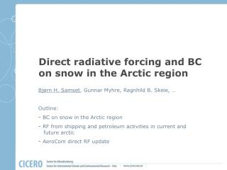 Direct radiative forcing  and BC  on snow  in  the  Arctic region