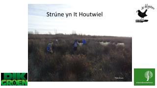 Strúne yn  It Houtwiel